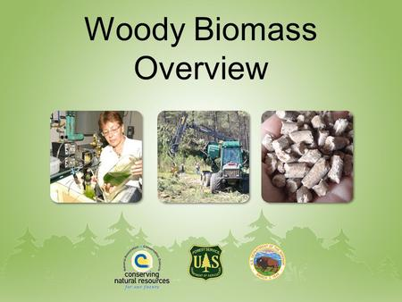 Woody Biomass Overview. Energy Demand Worldwide demand for fossil fuels projected to increase dramatically over the next 20 years. The U.S. has relatively.