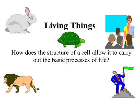 Living Things How does the structure of a cell allow it to carry out the basic processes of life?