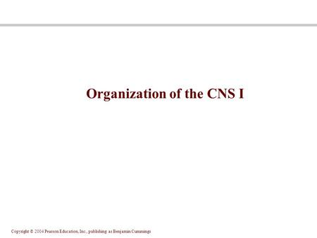 Copyright © 2004 Pearson Education, Inc., publishing as Benjamin Cummings Organization of the CNS I.