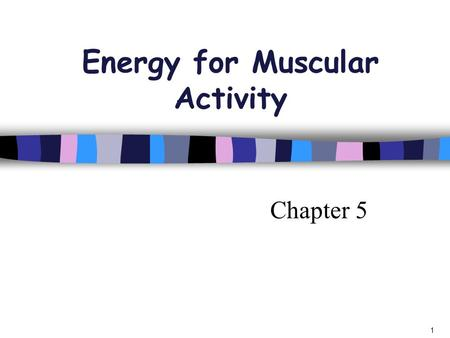 Chapter 5 1 Energy for Muscular Activity. Where do we get Energy for our working muscles?