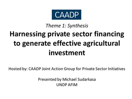 Theme 1: Synthesis Harnessing private sector financing to generate effective agricultural investment Hosted by: CAADP Joint Action Group for Private Sector.