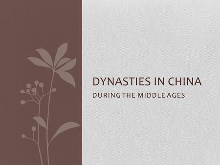 DURING THE MIDDLE AGES DYNASTIES IN CHINA. Tang Dynasty China's territory extended farther east, north, and south MORE contact with India and the Middle.