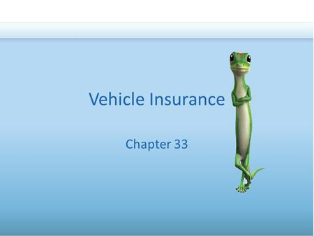 Vehicle Insurance Chapter 33. Types of Vehicle InsuranceLaws on Vehicle InsuranceThe Costs of Insurance Basics Bodily Injury Liability Property Damage.