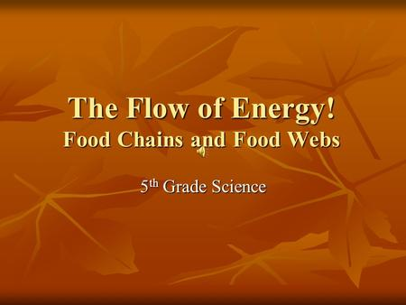 The Flow of Energy! Food Chains and Food Webs 5 th Grade Science.