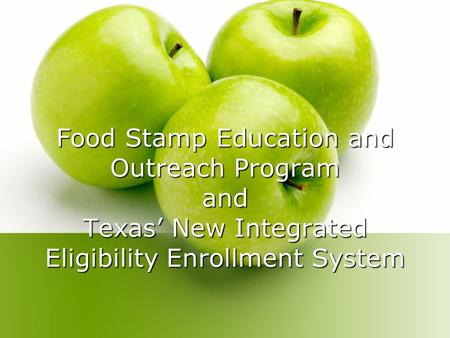 Food Stamp Education and Outreach Program and Texas' New Integrated Eligibility Enrollment System.