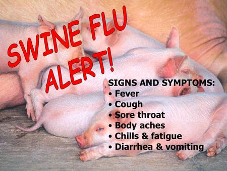 SIGNS AND SYMPTOMS: Fever Cough Sore throat Body aches Chills & fatigue Diarrhea & vomiting.