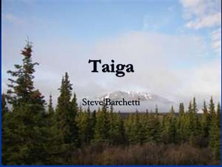 Taiga Steve Barchetti. Abiotic factors Climate: The taiga corresponds with regions of subarctic and cold continental climate. Long, severe winters (up.