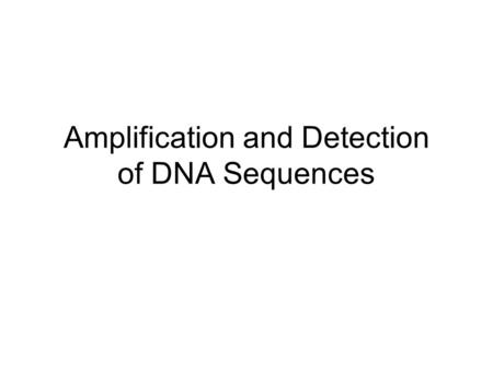 Amplification and Detection of DNA Sequences