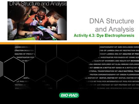 DNA Structure and Analysis Activity 4.3: Dye Electrophoresis.