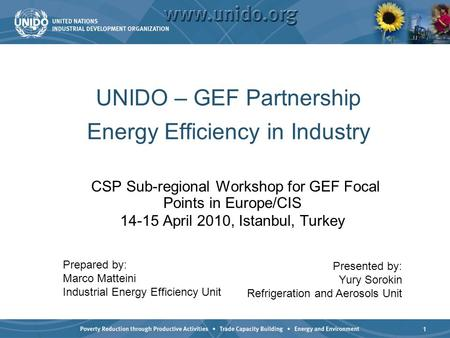 1 UNIDO – GEF Partnership Energy Efficiency in Industry CSP Sub-regional Workshop for GEF Focal Points in Europe/CIS 14-15 April 2010, Istanbul, Turkey.