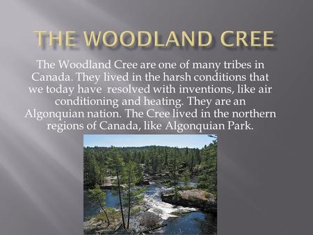 The Woodland Cree The Woodland Cree are one of many tribes in Canada. They lived in the harsh conditions that we today have resolved with inventions,