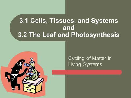 Cycling of Matter in Living Systems 3.1 Cells, Tissues, and Systems and 3.2 The Leaf and Photosynthesis.