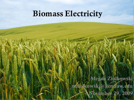 Biomass Electricity Megan Ziolkowski November 29, 2009.