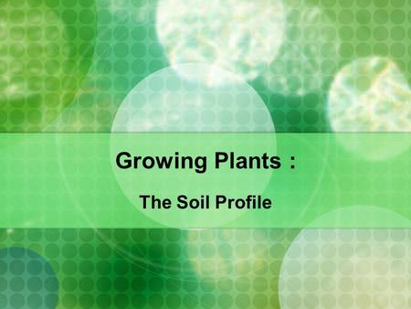 Growing Plants : The Soil Profile. What is Soil Made up of?