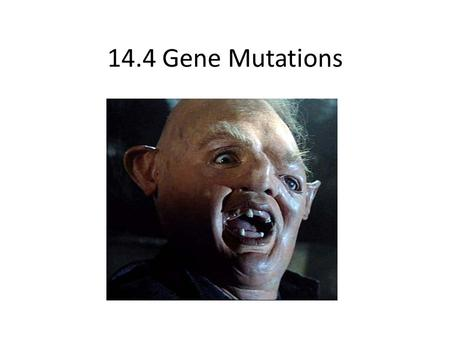 14.4 Gene Mutations. What is a Mutation? A mutation is any change in the amount or structure of the DNA of an organism. KEY POINT: If this occurs in somatic.