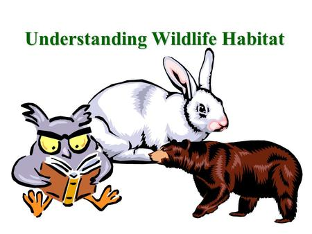 Understanding Wildlife Habitat What is Wildlife Habitat? The kind of place where an… –Animal –Bird –Fish –or plant live in a natural state.