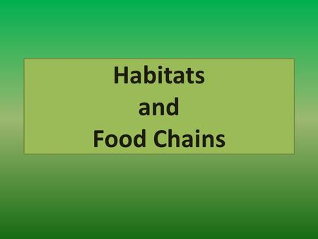Habitats and Food Chains