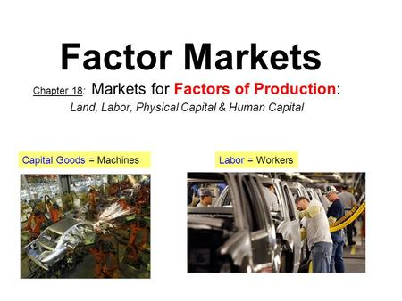 Factor Markets Land, Labor, Physical Capital & Human Capital