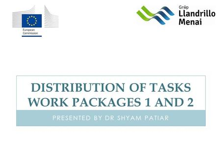 DISTRIBUTION OF TASKS WORK PACKAGES 1 AND 2 PRESENTED BY DR SHYAM PATIAR.