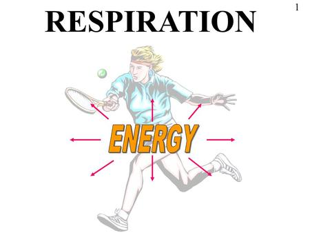 RESPIRATION 1. It is worth while studying this presentation thoroughly because it is essential for an understanding of all the activities of living cells.