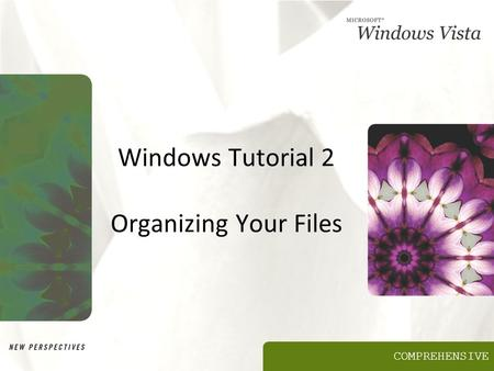 COMPREHENSIVE Windows Tutorial 2 Organizing Your Files.