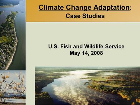 Climate Change Adaptation : Case Studies U.S. Fish and Wildlife Service May 14, 2008.