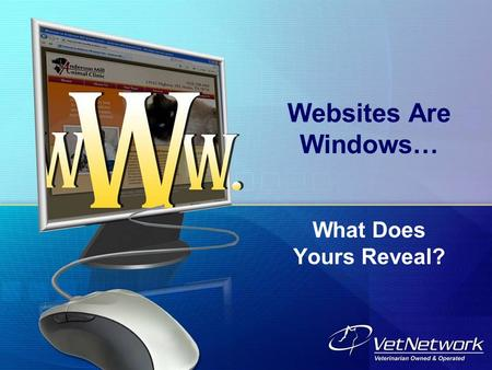 Websites Are Windows… What Does Yours Reveal?. What Must Your Website Reveal? Your Website must meet the Needs and Expectations of Clients and Perspective.
