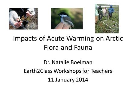 Impacts of Acute Warming on Arctic Flora and Fauna Dr. Natalie Boelman Earth2Class Workshops for Teachers 11 January 2014.