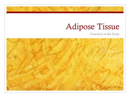 Adipose Tissue Function in the Body.