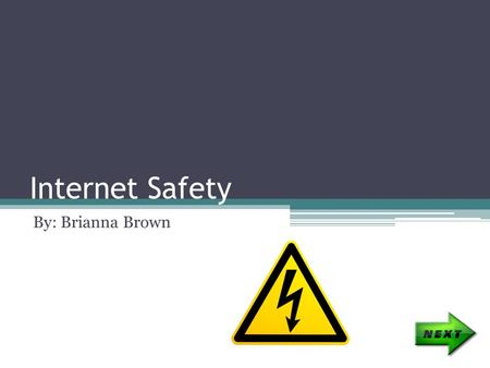 Internet Safety By: Brianna Brown. Index What Is Internet Safety? Passwords Cyber Bullying Safety Tips Quiz.