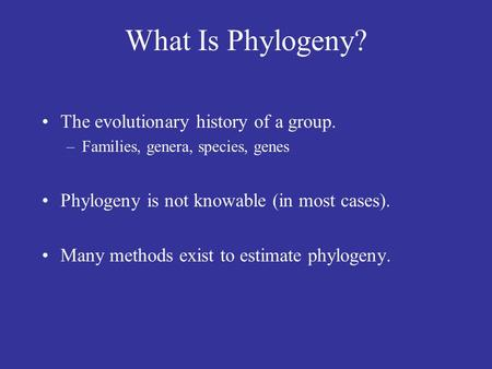 What Is Phylogeny? The evolutionary history of a group.