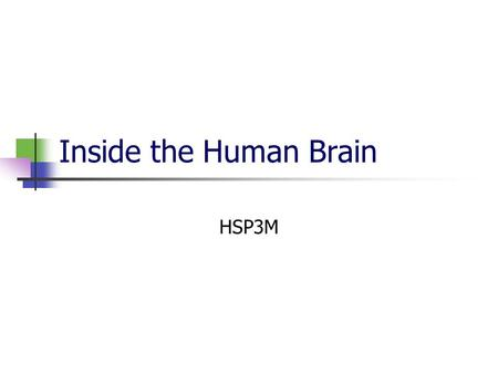 Inside the Human Brain HSP3M. Inside the Teenage Brain Adolescence is characterized by extreme mood swings and participation in risk-taking behaviour.