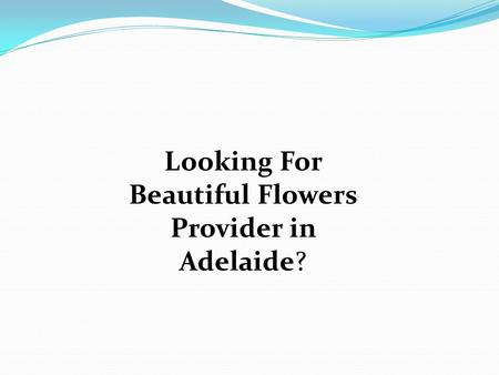 Looking For Beautiful Flowers Provider in Adelaide?