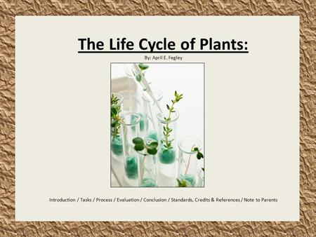 The Life Cycle of Plants: By: April E. Fegley Introduction / Tasks / Process / Evaluation / Conclusion / Standards, Credits & References / Note to Parents.