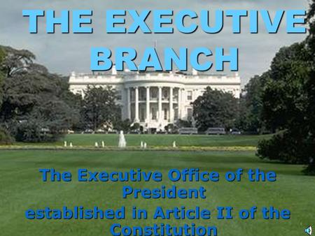 THE EXECUTIVE BRANCH The Executive Office of the President established in Article II of the Constitution.