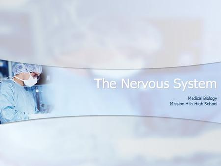 The Nervous System Medical Biology Mission Hills High School.