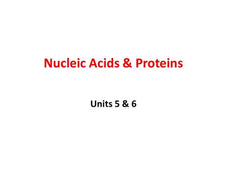 Nucleic Acids & Proteins Units 5 & 6. Nucleic Acids Nucleic Acids are Polymers made of Nucleotides 3 Parts: a)Phosphate group b)5-Carbon Sugar c)Nitrogen.