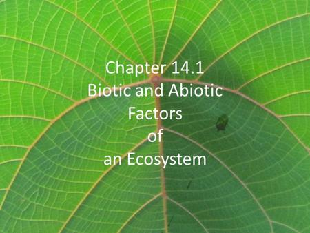 Chapter 14.1 Biotic and Abiotic Factors of an Ecosystem