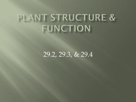 29.2, 29.3, & 29.4.  Major Functions: anchor plant to soil, absorb and transport water and nutrients, and store water and organic compounds  How do.