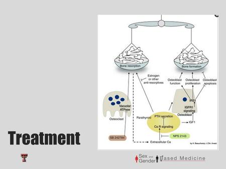 Treatment. Bisphosphonates Promotes bone formation and decreases bone resorption Mechanism of Action First line treatment for osteoporosis in both men.