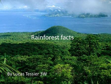 Rainforest facts By Lucas Tessier 3W. What is a rainforest? A rainforest is a big place with huge trees, waterfalls and a lot of green plants also it.