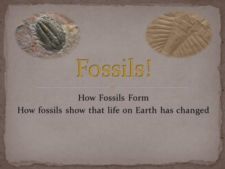 How Fossils Form How fossils show that life on Earth has changed.