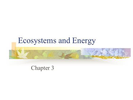 Ecosystems and Energy Chapter 3. Ecology Study of the interactions of organisms and their living and non-living environment Many different scales to ecology.