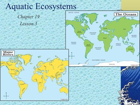 Aquatic Ecosystems Chapter 19 Lesson 3. Types of Ecosystems Water takes up more than 70% of the Earth's surface. That means that if you divided the Earth.