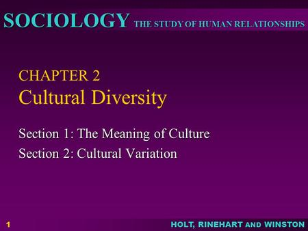 THE STUDY OF HUMAN RELATIONSHIPS SOCIOLOGY HOLT, RINEHART AND WINSTON 1 CHAPTER 2 Cultural Diversity Section 1: The Meaning of Culture Section 2: Cultural.