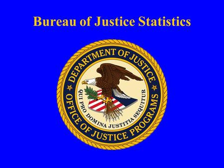 Bureau of Justice Statistics. Conducting Victimization and Community Safety Surveys: Using Web-based Technology U.N. Meeting on Crime Statistics Geneva.