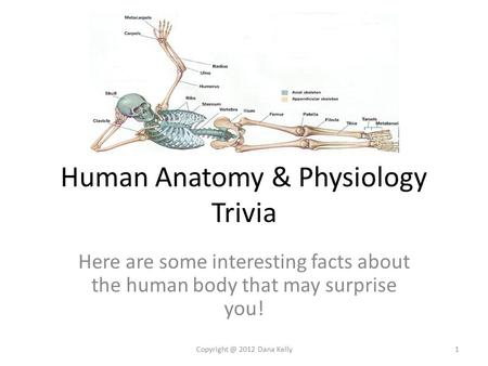 Human Anatomy & Physiology Trivia Here are some interesting facts about the human body that may surprise you! 2012 Dana Kelly1.