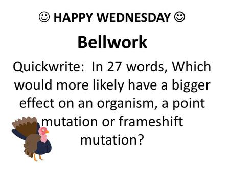HAPPY WEDNESDAY Bellwork Quickwrite: In 27 words, Which would more likely have a bigger effect on an organism, a point mutation or frameshift mutation?