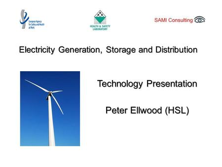 Electricity Generation, Storage and Distribution Technology Presentation Peter Ellwood (HSL)
