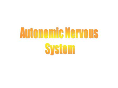 Autonomic Nervous System Neural Control of Involuntary Effectors ANS: n Innervates organs not usually under voluntary control. n Effectors include cardiac.